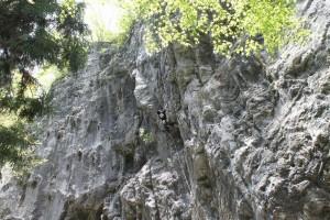 備中の岩場でのジュニア